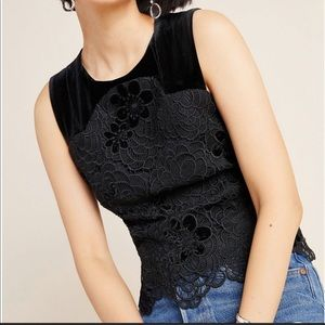NWT Anthropolgie Dawna Lace Velvet Blouse 14